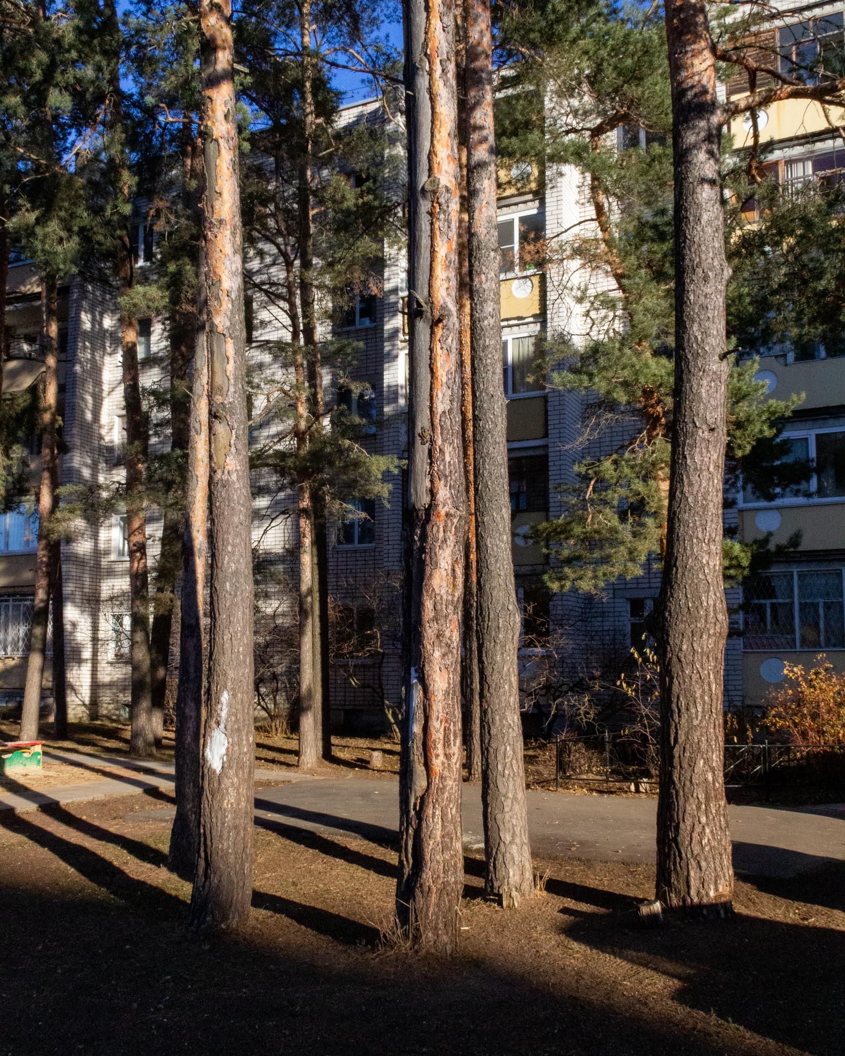 Нижегородская область, город Саров - Фото