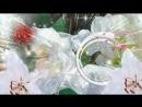 Nesravnenno_krasivoe_video_pozdravlenie_s_Dnem_Rozhdeniya_zhenshhine__(MosCatalogue)