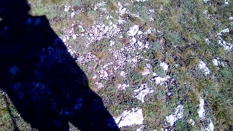Над обрывом Северной Демерджи