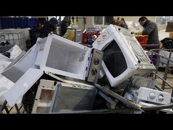 Правительство Японии Решило Избавиться от всех Микроволновых Печей в стране до конца года