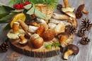 Осень — время собирать грибы Какой лесной гриб ваш самый…