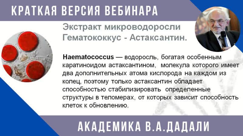 Астаксантин Продукт нового поколения Что это такое Краткая лекция академика Дадали