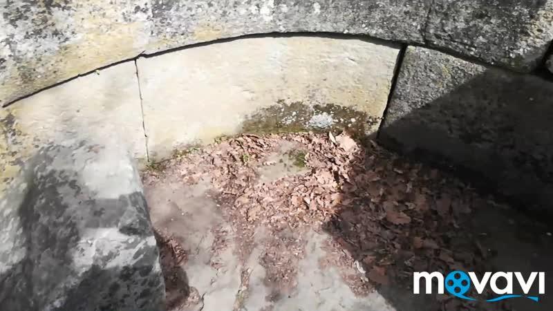 Дольмены третье видео