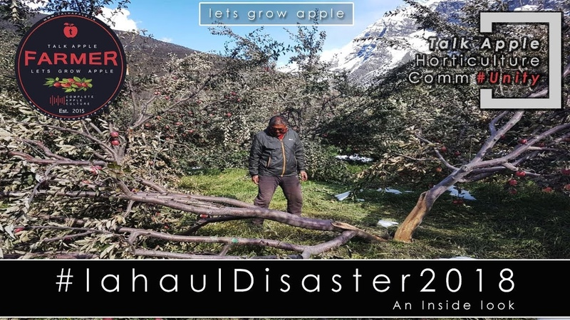 Lets Grow Apple | Lahaul Disaster 2018 - An inside Look | lahauldisaster2018