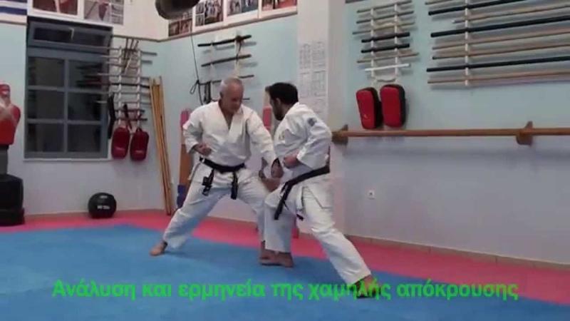 Techniques Gedan Barai 43