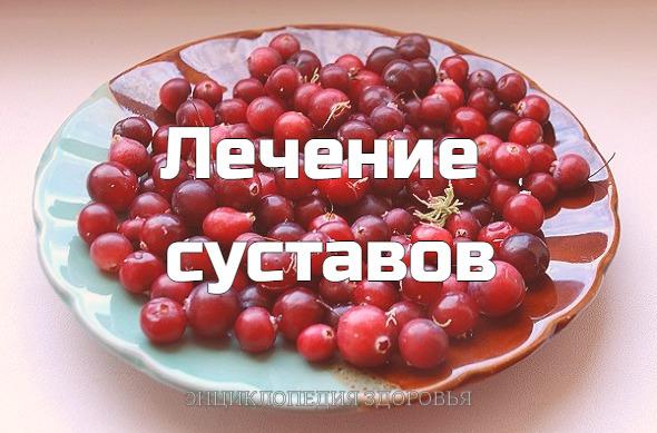 """Рецепт нашла у """"К.НИШИ"""" и благодаря составу клюква+мёд+чеснок и"""