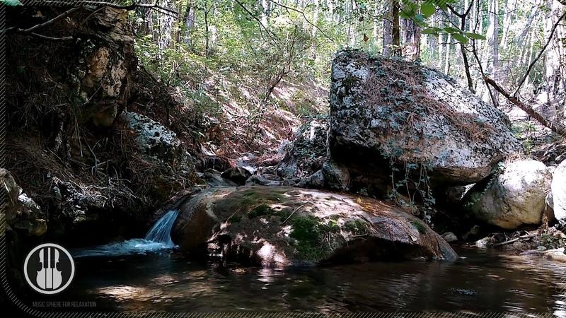 Звуки природы для релаксации и медитации Расслабляющий шум горной реки 30 минут