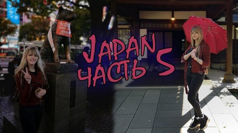 Япония прошлого века Встреча с Хатико