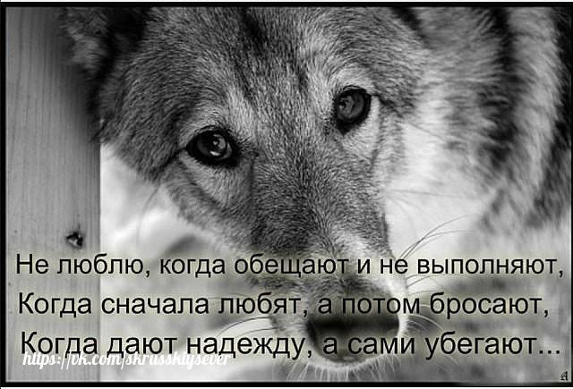 Истина........... GdLL1ookqzU