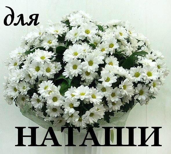 картинка цветы для наташки турист
