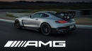 Made in Affalterbach The new Mercedes AMG GT Black Series