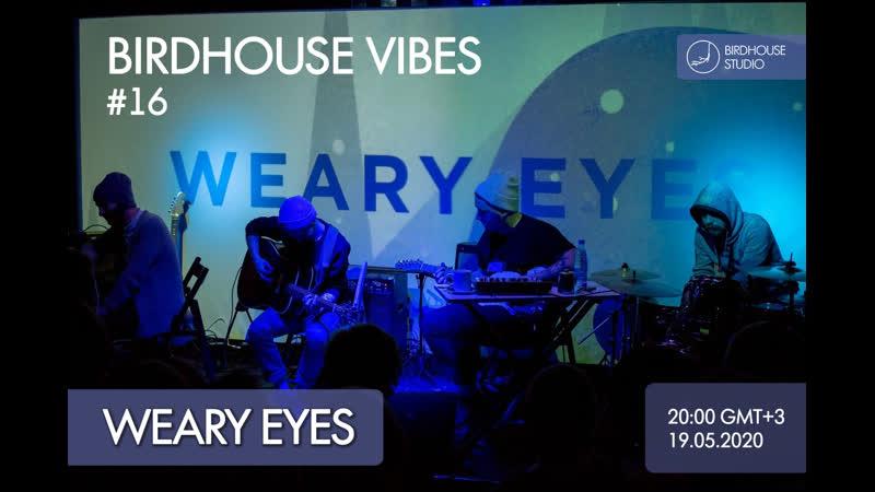 Birdhouse vibes 16 Weary Eyes talkshow goodmood
