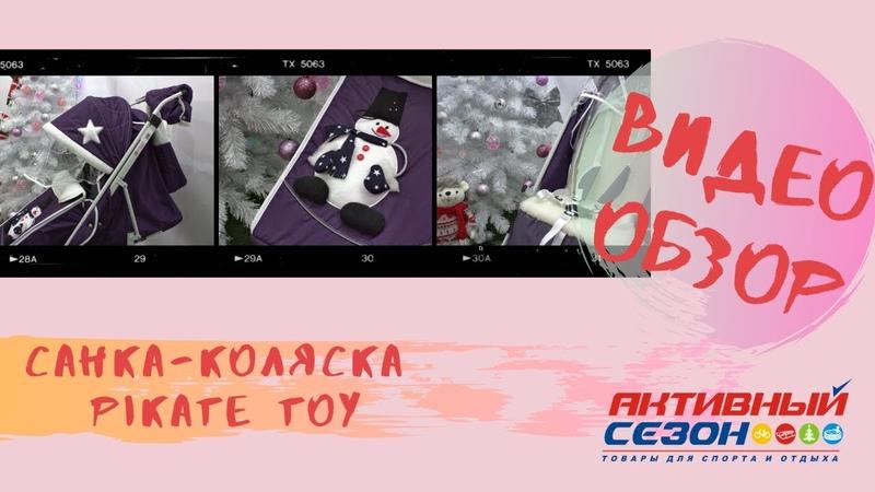 Санки Pikat Toy