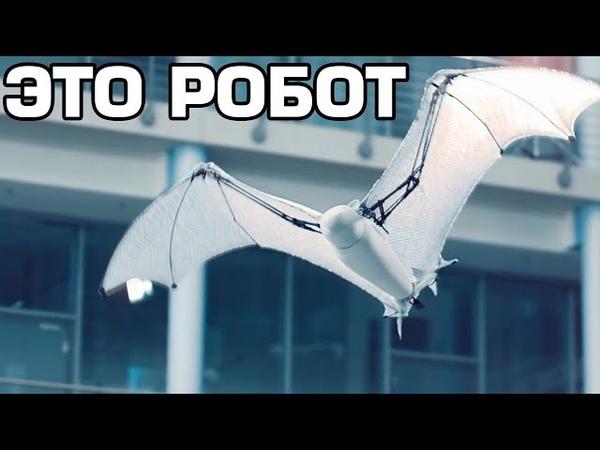 10 Самых удивительных роботов в мире
