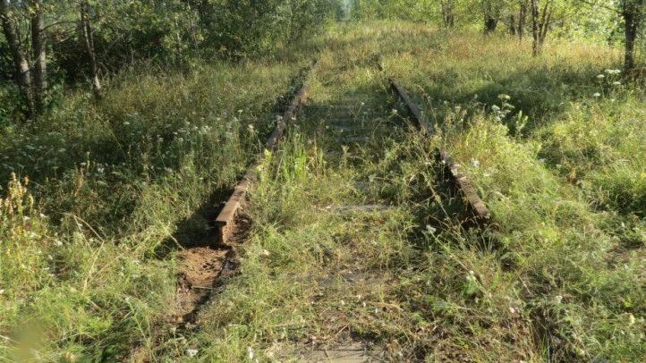 Двое томичей украли 48 метров рельсов в Асино
