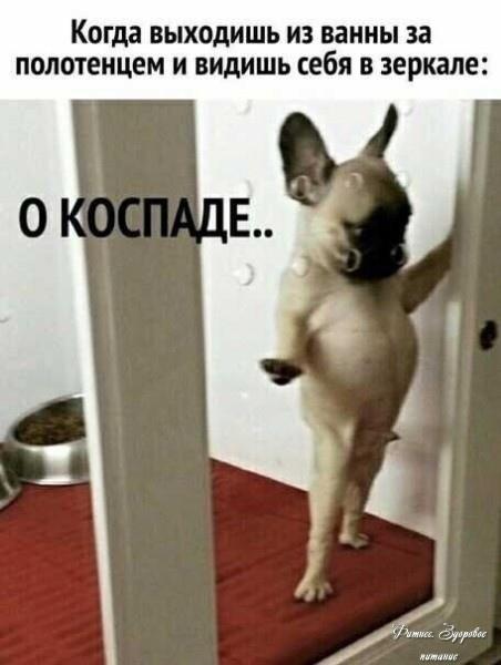 Κaкaя ecть тaкую и любитe)))