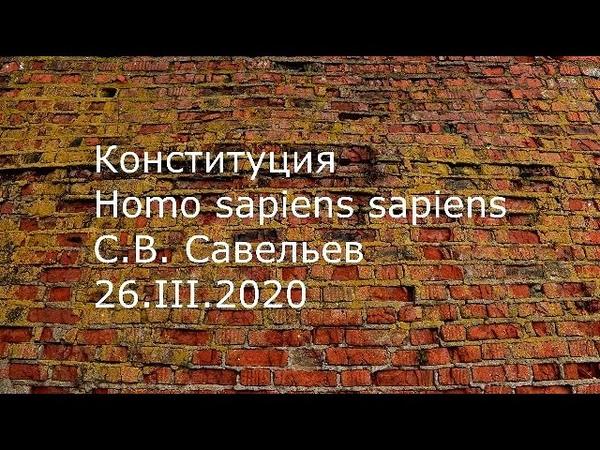 С В Савельев Конституция Homo sapiens sapiens