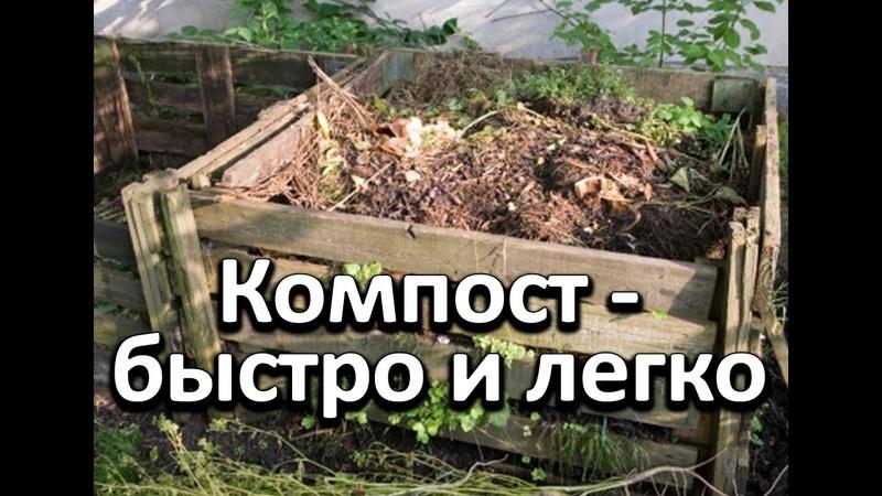 Простой и легкий способ получения питательного компоста осенью