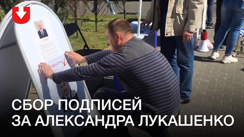Сбор подписей за Александра Лукашенко у Dana Mall