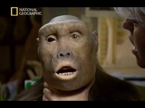 Обезьяноподобный человек В поисках первого человека National Geographic