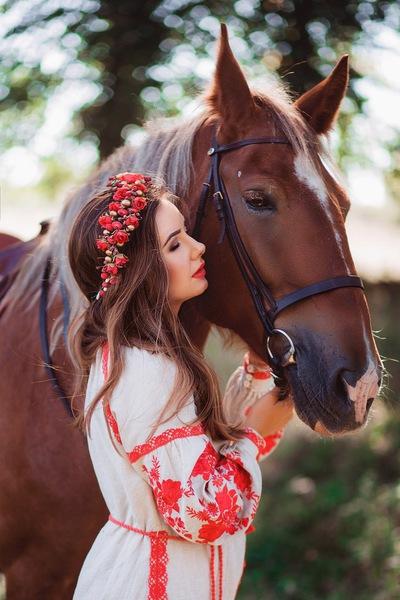 Horse Katarina