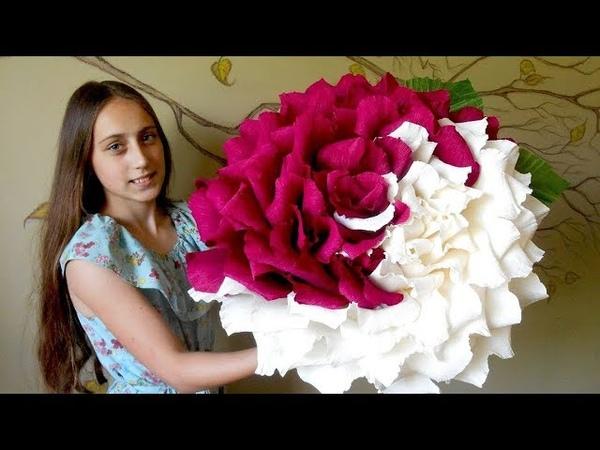 Большая двухцветная роза из гофрированной бумаги