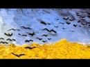 6. Il potere del Genio - Van Gogh
