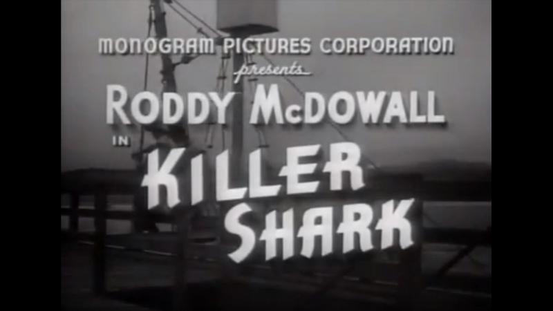 🎥 Акула-убийца / Killer Shark (1950)