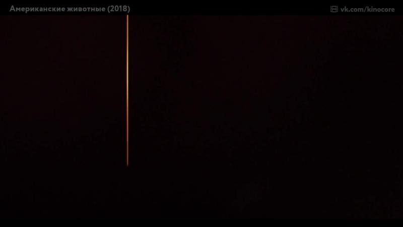 Премьера криминальной драмы «  А  м  е  р  и  к  а  н  с  к  и  е ж  и  в  о  т  н  ы  е» (2 0 1 8)