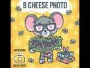 Футболки Cheese Photo