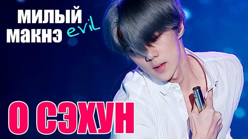 СЭХУН МИЛЫЙ (EVIL) МАКНЭ EXO | OH SEHUN | K POP ARI RANG
