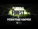 Forest 6 Танцуем с аборигенами Розыгрыш ключей Steam Игровой стрим 110