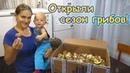 Собираем маслята. Поиски рыжиков и др. грибов. 08.18г. Семья Бровченко.