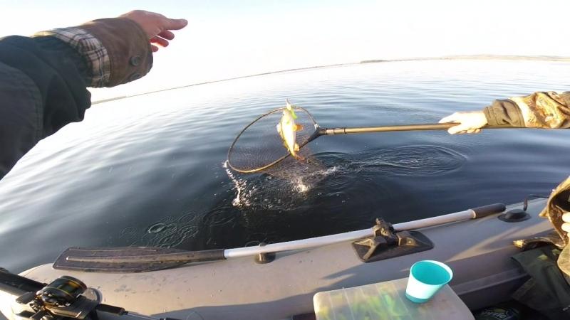 Рыбалка на Щуку озёра карандаши и окунь