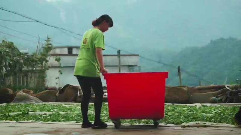 Одинокие кусты гор феникса - Фен Хуан Дань Цун