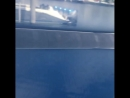 Защита катера 42 Hydra-Sports составами Ceramic Pro