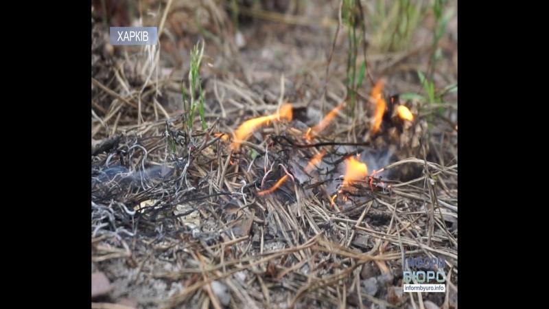 Надзвичайний рівень пожежної небезпеки: як себе поводити з вогнем на природі