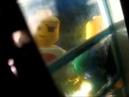 Лего зомби атакуют! Lego zombie attack