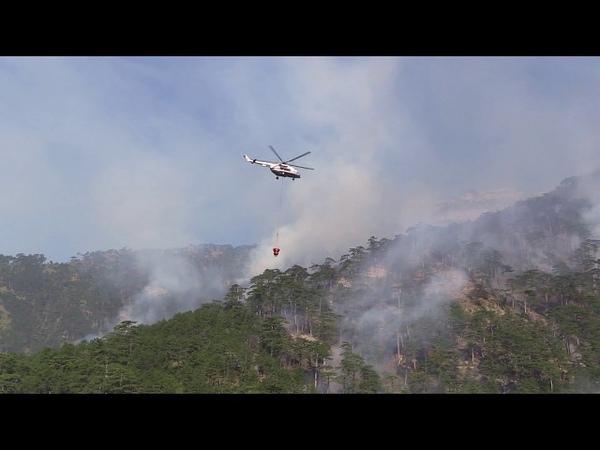 12 08 Природный пожар в урочище Уч Кош удалось локализовать