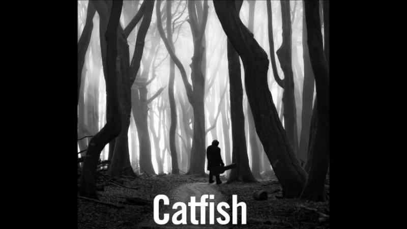 Catfish Leading Me