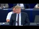 --Der Tag heute wird in die Geschichte eingehen- ► Rede von Meuthen in EU-Parlament
