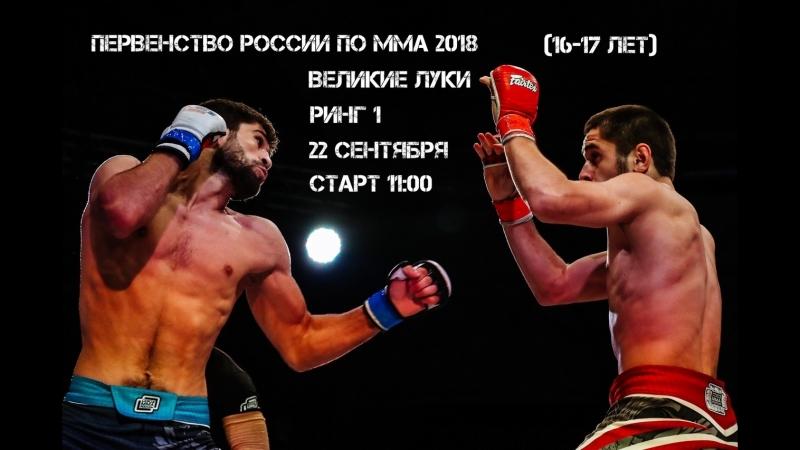 Союз ММА L!VE: Первенство России по ММА 2018. Ринг 1