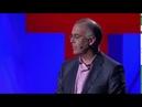 TED RUS x Дэвид Брукс социальные животные