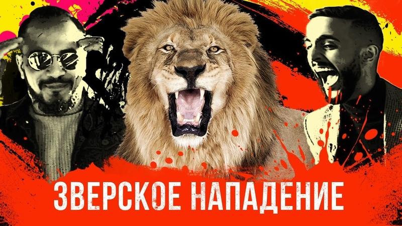 Лев напал на Натана Гусейн Гасанов снова в деле Проект Подстава Выпуск 3