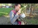 Мороженое и Нинуля