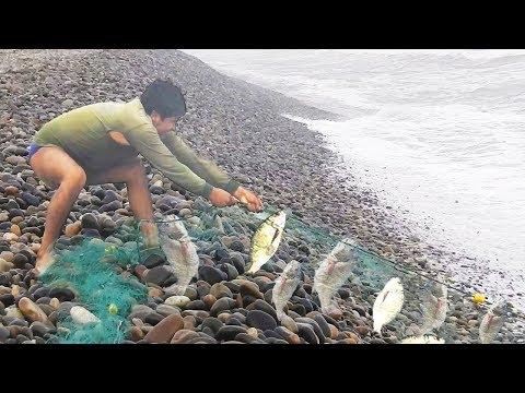 Mira las Técnicas que usa este Gran PESCADOR para Pescar con RED en el Mar