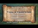 44. Недельная глава Торы «ДВАРИМ» (Втор. 1:1 - 3:22) — Виталий Олийник