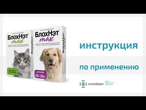 БлохНэт max Инструкция по применению для кошек и собак