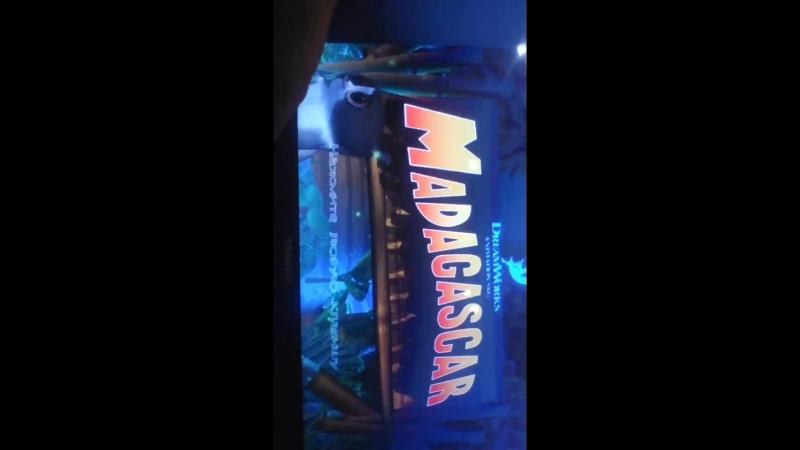 Мадагаскар ностальгия 1 серия