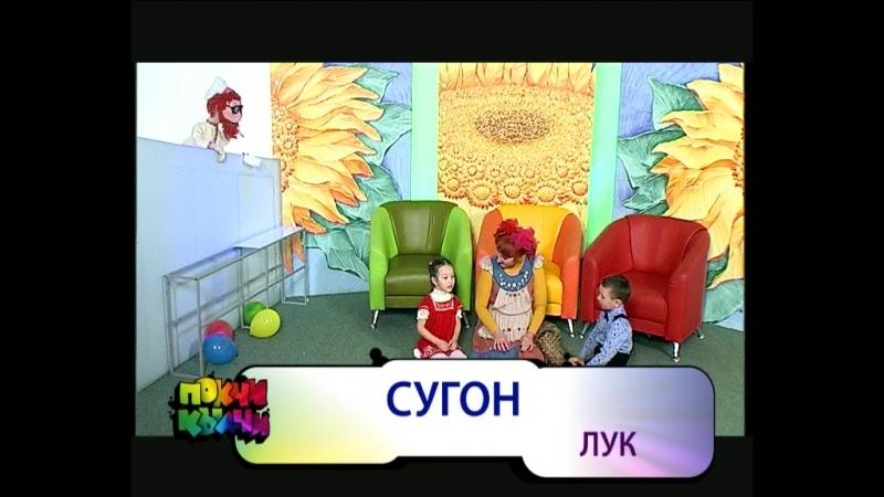 16.11.17_покчи_кылчи_бакча_сиёнъёс